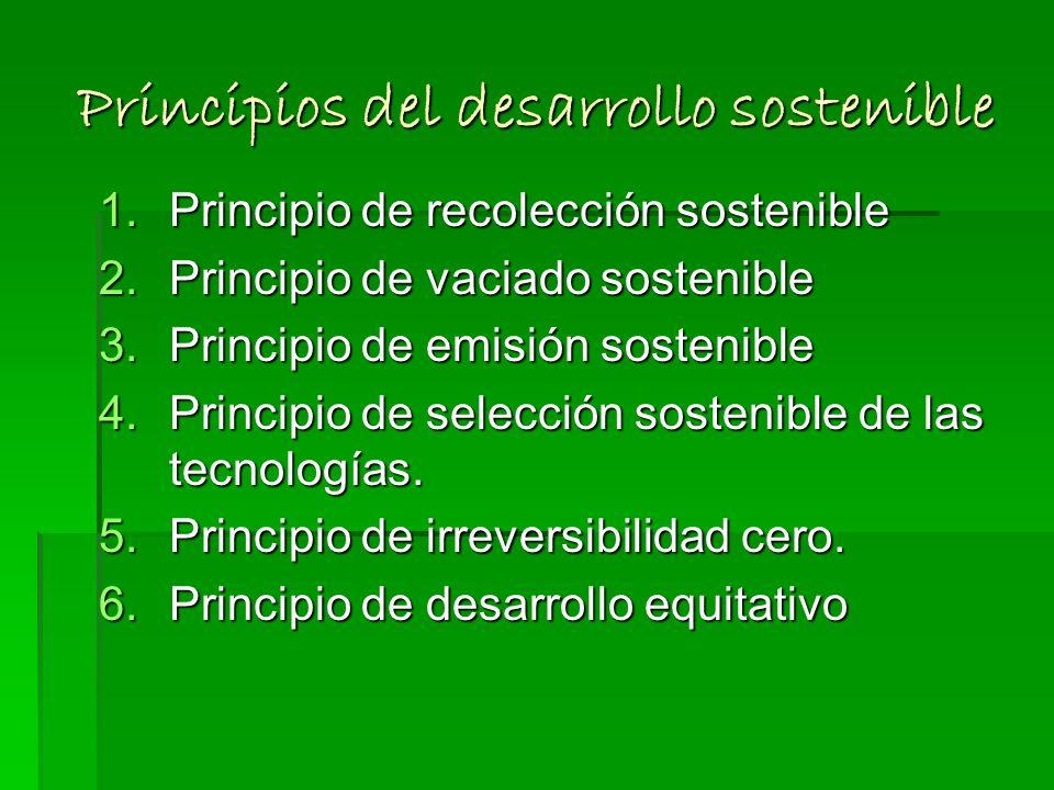 Principios del desarrollo sostenible