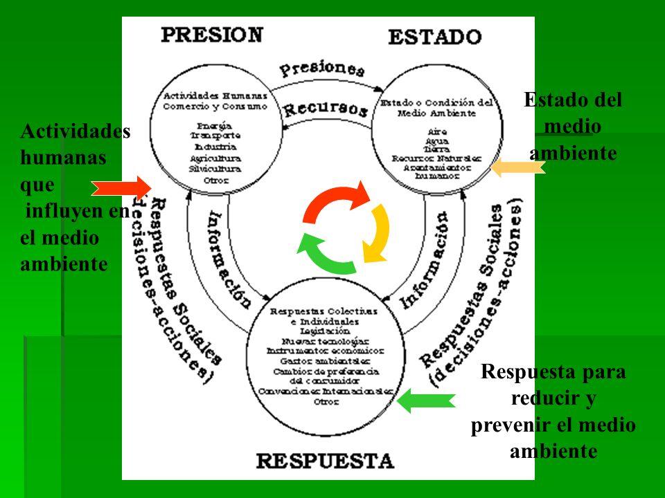 Estado del medio ambiente Actividades humanas que