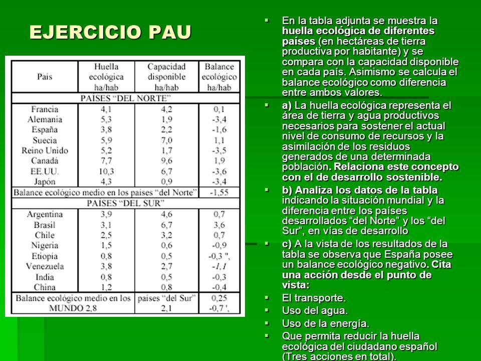 EJERCICIO PAU