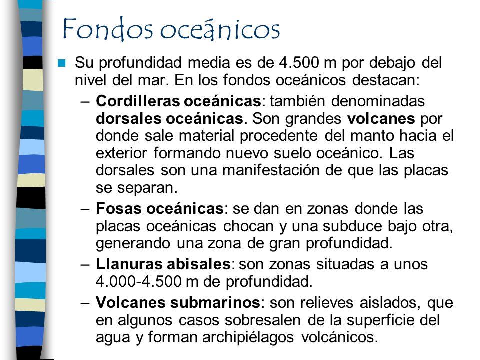 Fondos oceánicos Su profundidad media es de 4.500 m por debajo del nivel del mar. En los fondos oceánicos destacan:
