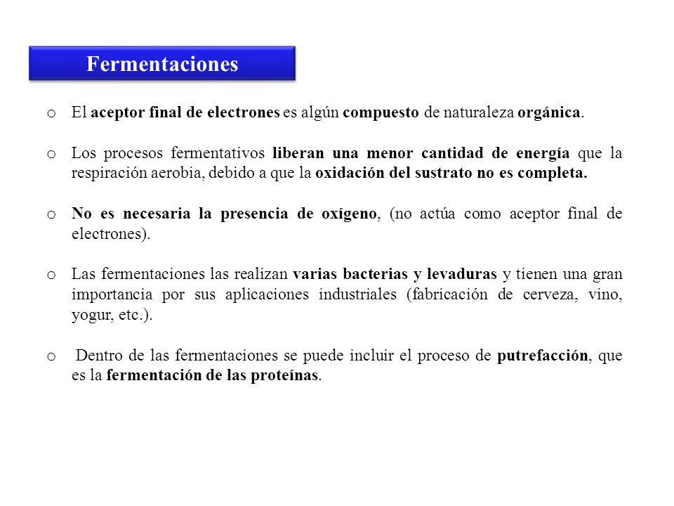 FermentacionesEl aceptor final de electrones es algún compuesto de naturaleza orgánica.