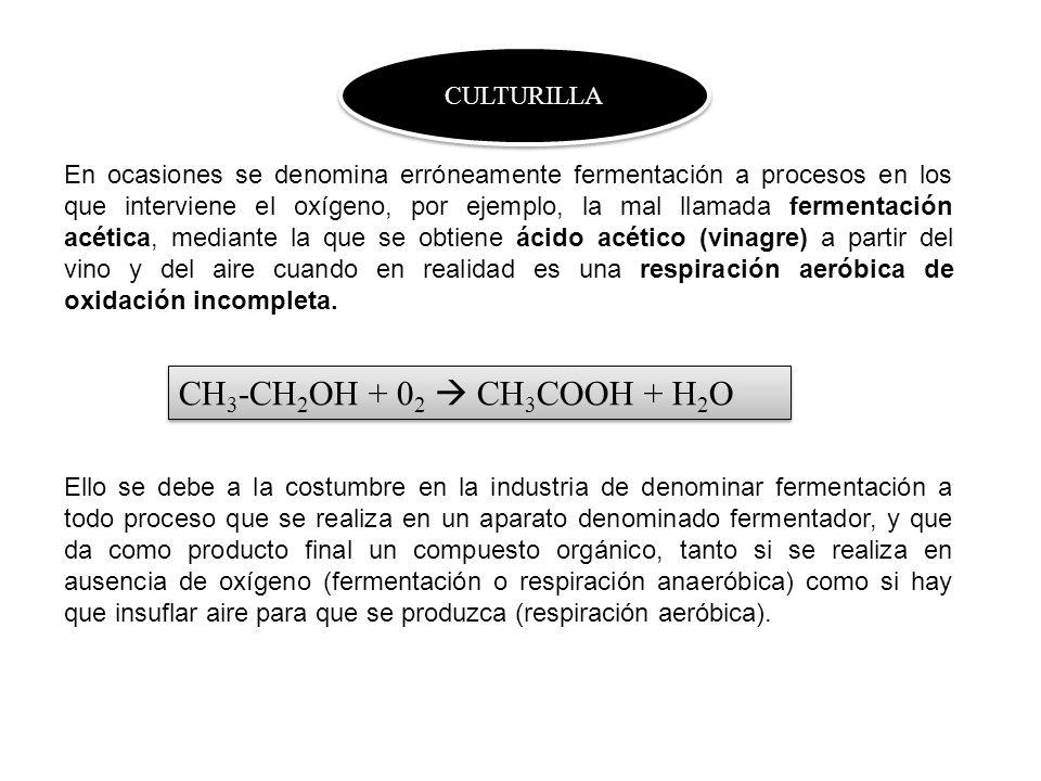 CH3-CH2OH + 02  CH3COOH + H2O CULTURILLA