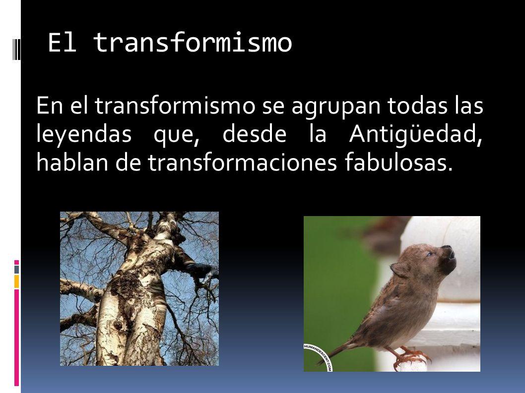 El transformismo En el transformismo se agrupan todas las leyendas que, desde la Antigüedad, hablan de transformaciones fabulosas.