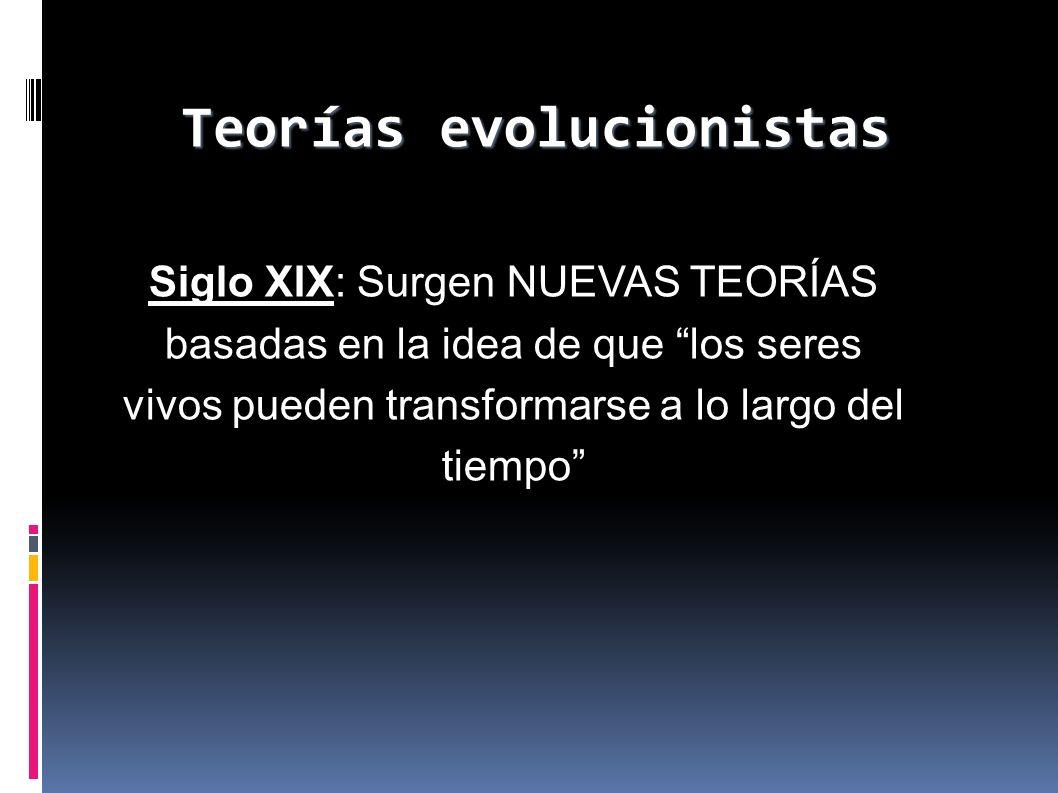 Teorías evolucionistas