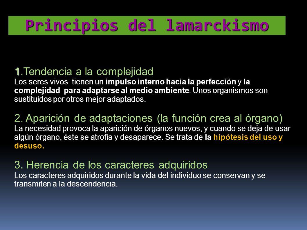 Principios del lamarckismo