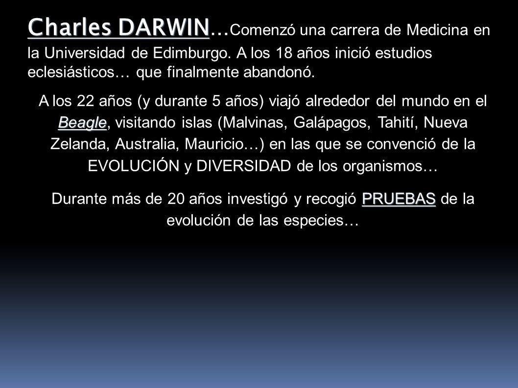 Charles DARWIN…Comenzó una carrera de Medicina en la Universidad de Edimburgo. A los 18 años inició estudios eclesiásticos… que finalmente abandonó.