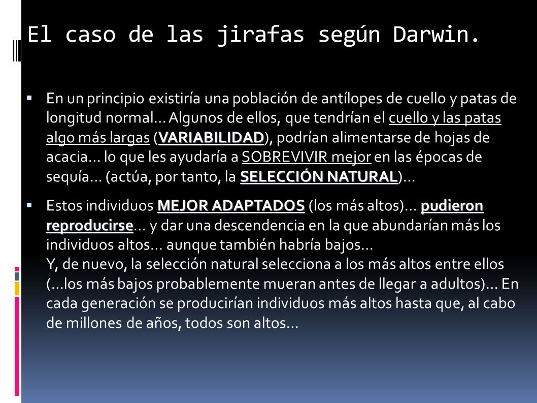 El caso de las jirafas según Darwin.