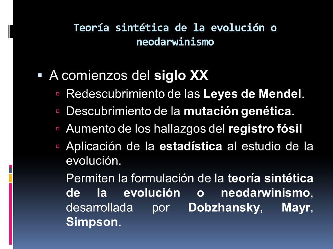 Teoría sintética de la evolución o neodarwinismo