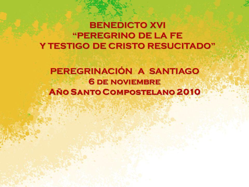 Año Santo Compostelano 2010