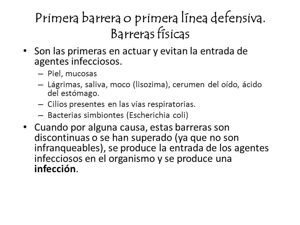 Primera barrera o primera línea defensiva. Barreras físicas