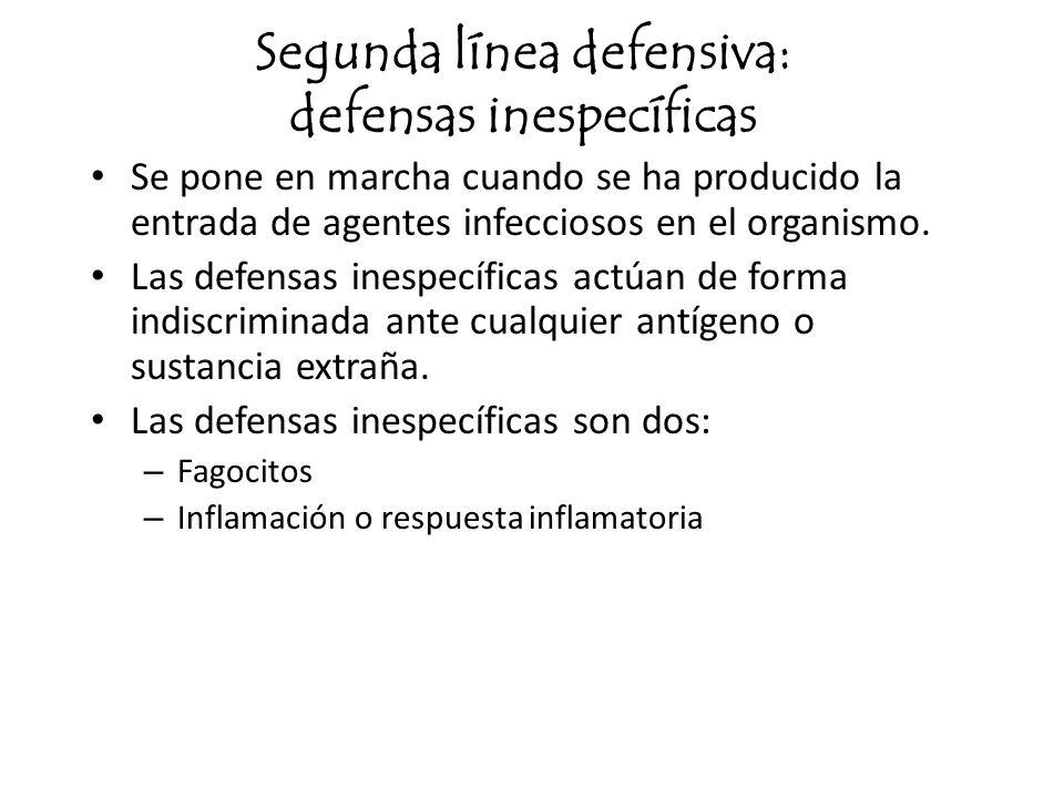 Segunda línea defensiva: defensas inespecíficas