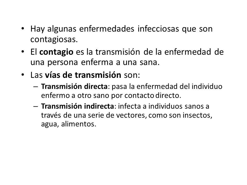 Hay algunas enfermedades infecciosas que son contagiosas.