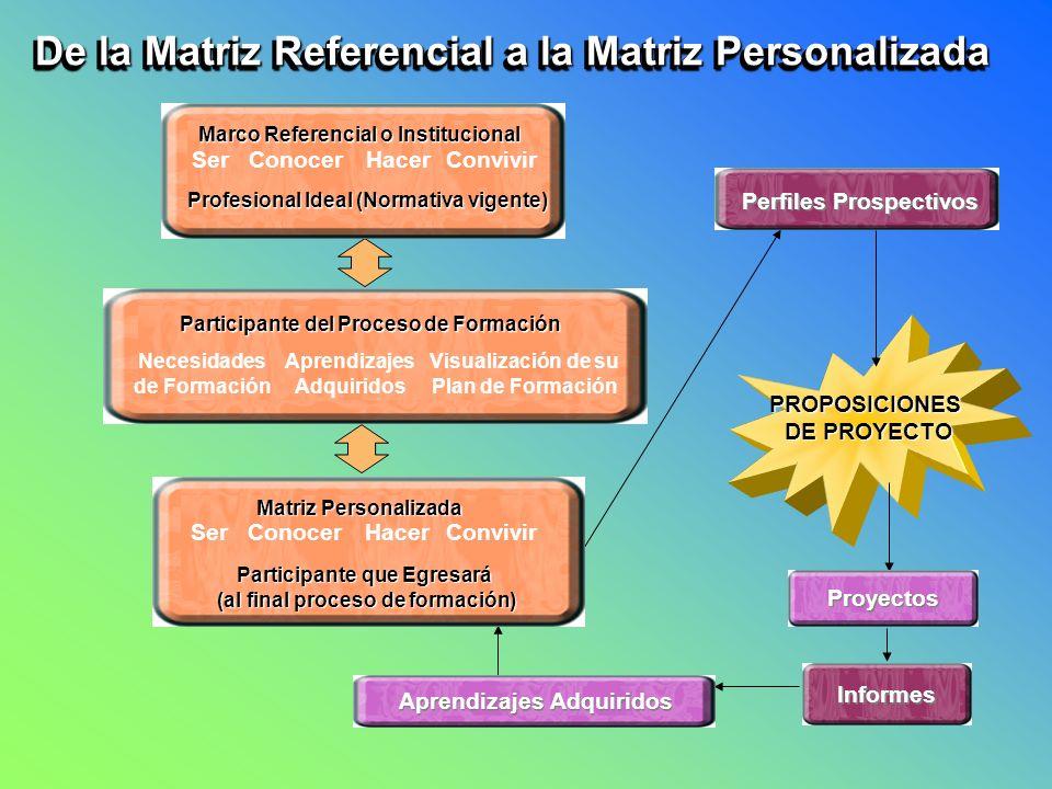 De la Matriz Referencial a la Matriz Personalizada