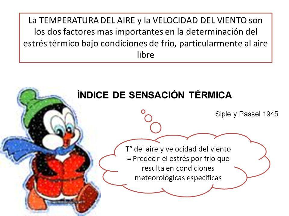 ÍNDICE DE SENSACIÓN TÉRMICA
