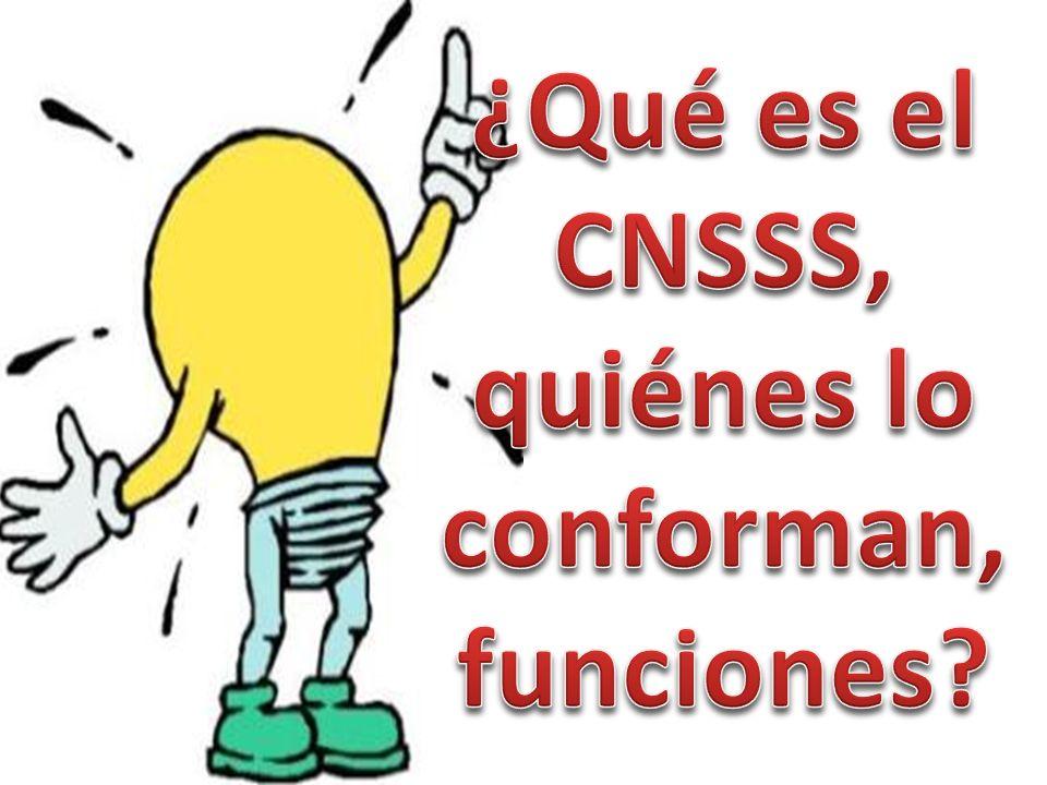 ¿Qué es el CNSSS, quiénes lo conforman, funciones