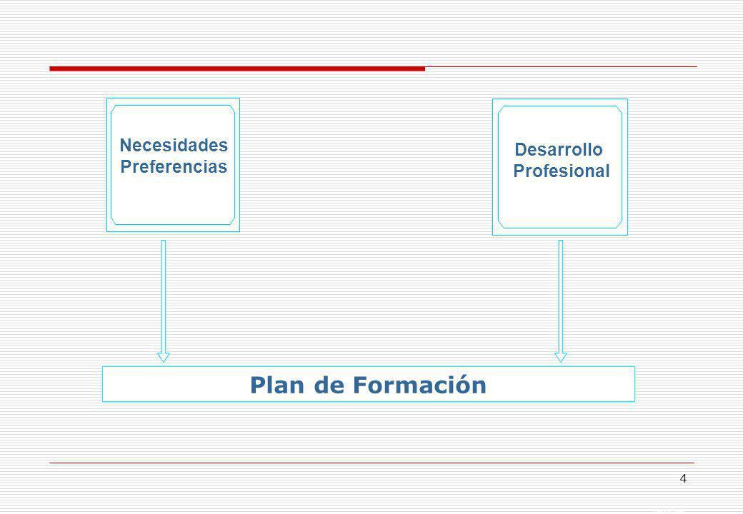 Plan de Formación Necesidades Desarrollo Preferencias Profesional