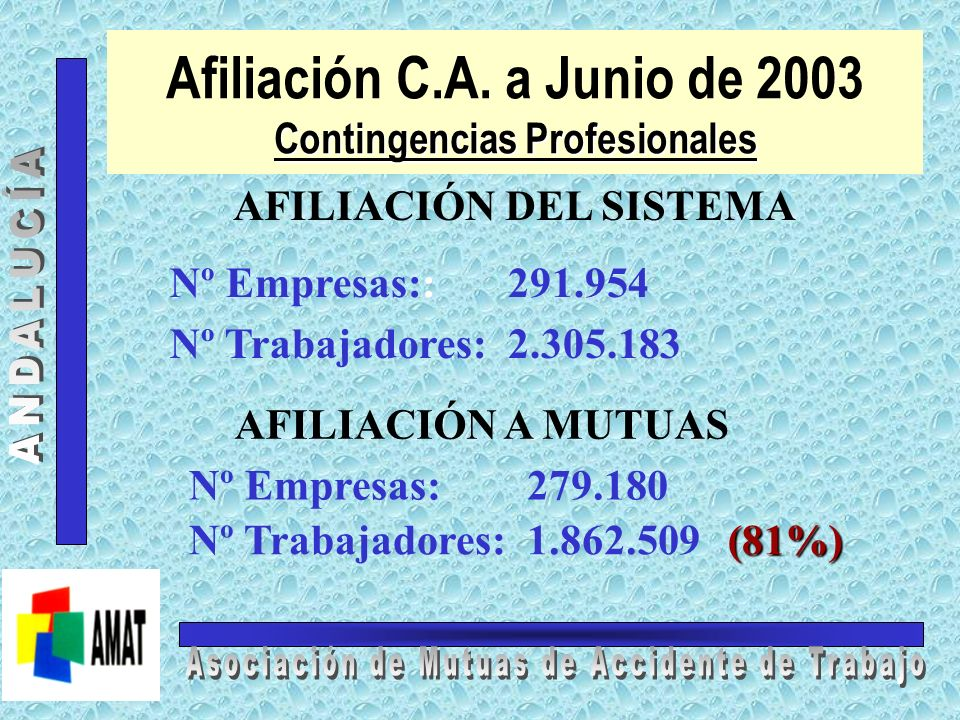 Afiliación C.A. a Junio de 2003 Contingencias Profesionales