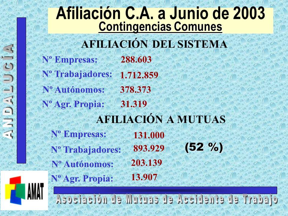 Afiliación C.A. a Junio de 2003 Contingencias Comunes