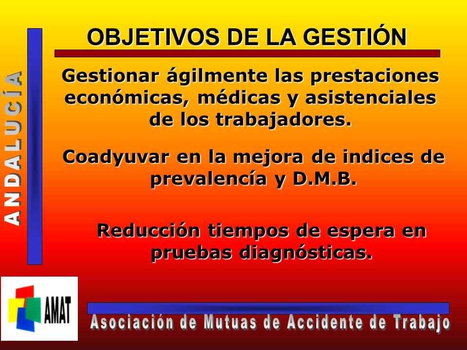 OBJETIVOS DE LA GESTIÓN