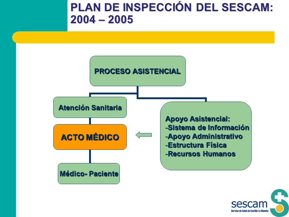 PLAN DE INSPECCIÓN DEL SESCAM: 2004 – 2005