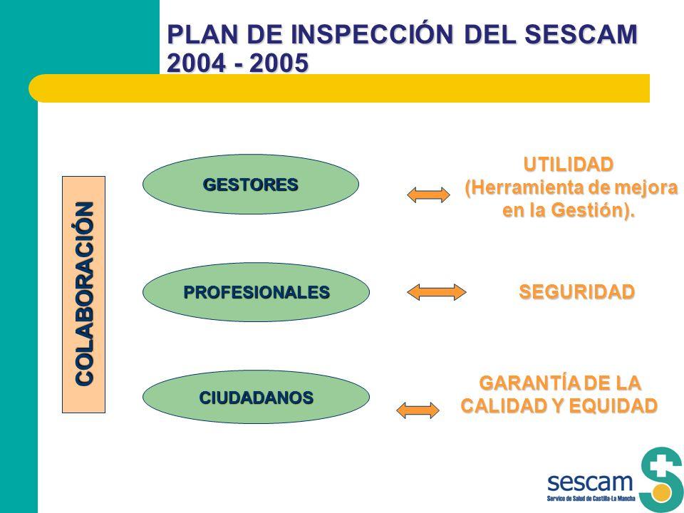 PLAN DE INSPECCIÓN DEL SESCAM 2004 - 2005