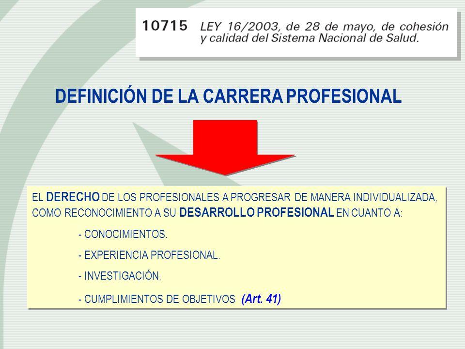 DEFINICIÓN DE LA CARRERA PROFESIONAL
