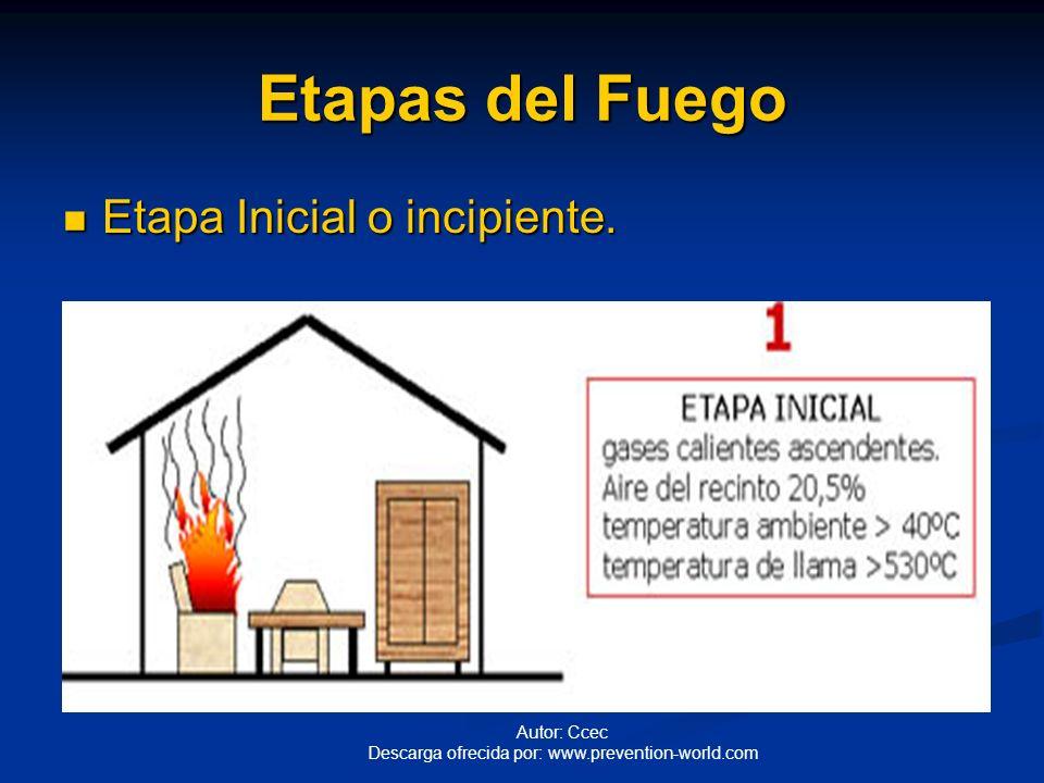 Etapas del Fuego Etapa Inicial o incipiente.