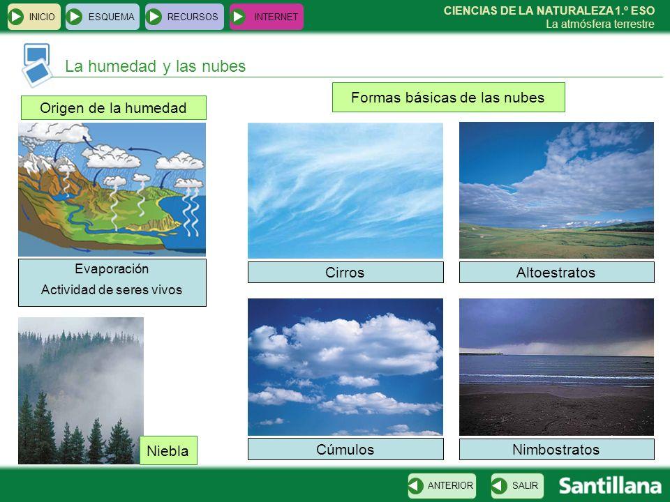 La humedad y las nubes Formas básicas de las nubes