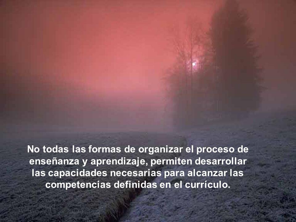 No todas las formas de organizar el proceso de enseñanza y aprendizaje, permiten desarrollar las capacidades necesarias para alcanzar las competencias definidas en el currículo.