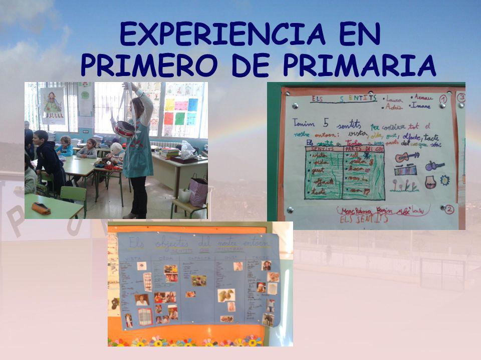 EXPERIENCIA EN PRIMERO DE PRIMARIA