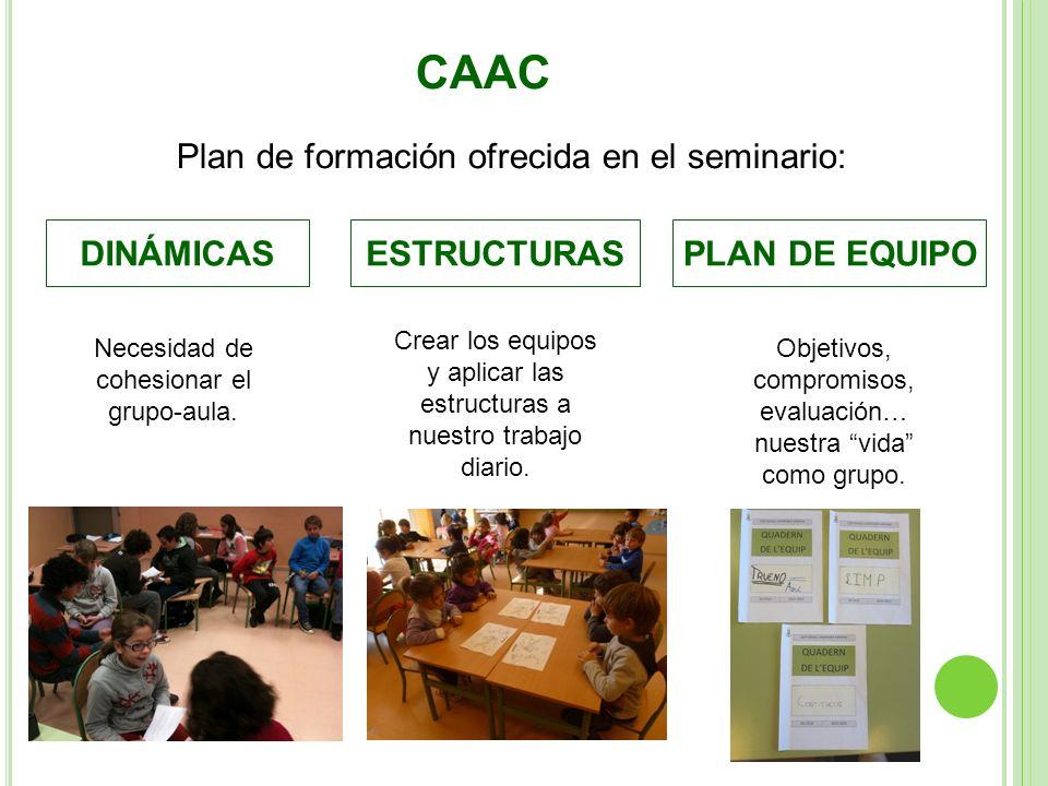 CAAC Plan de formación ofrecida en el seminario: DINÁMICAS ESTRUCTURAS