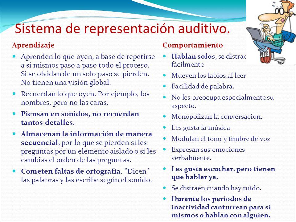 Sistema de representación auditivo.