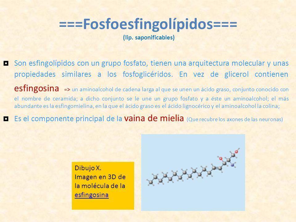 ===Fosfoesfingolípidos=== (lip. saponificables)