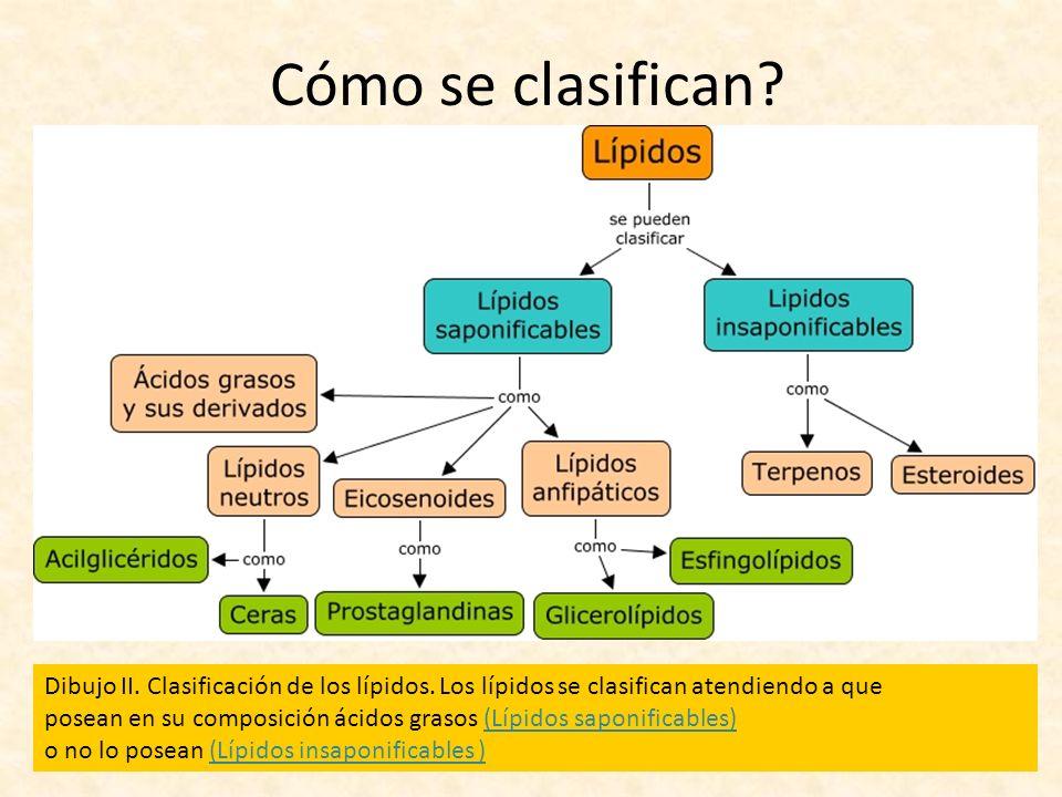 Cómo se clasifican Dibujo II. Clasificación de los lípidos. Los lípidos se clasifican atendiendo a que.