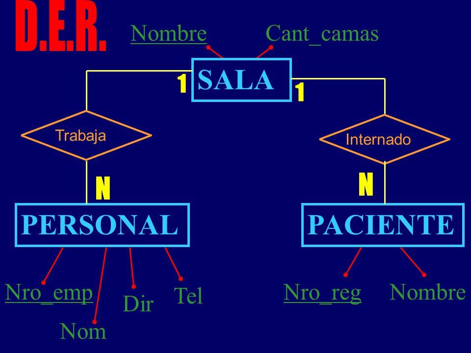 SALA PERSONAL PACIENTE N D.E.R. Nombre Cant_camas Nro_emp Nom Dir Tel