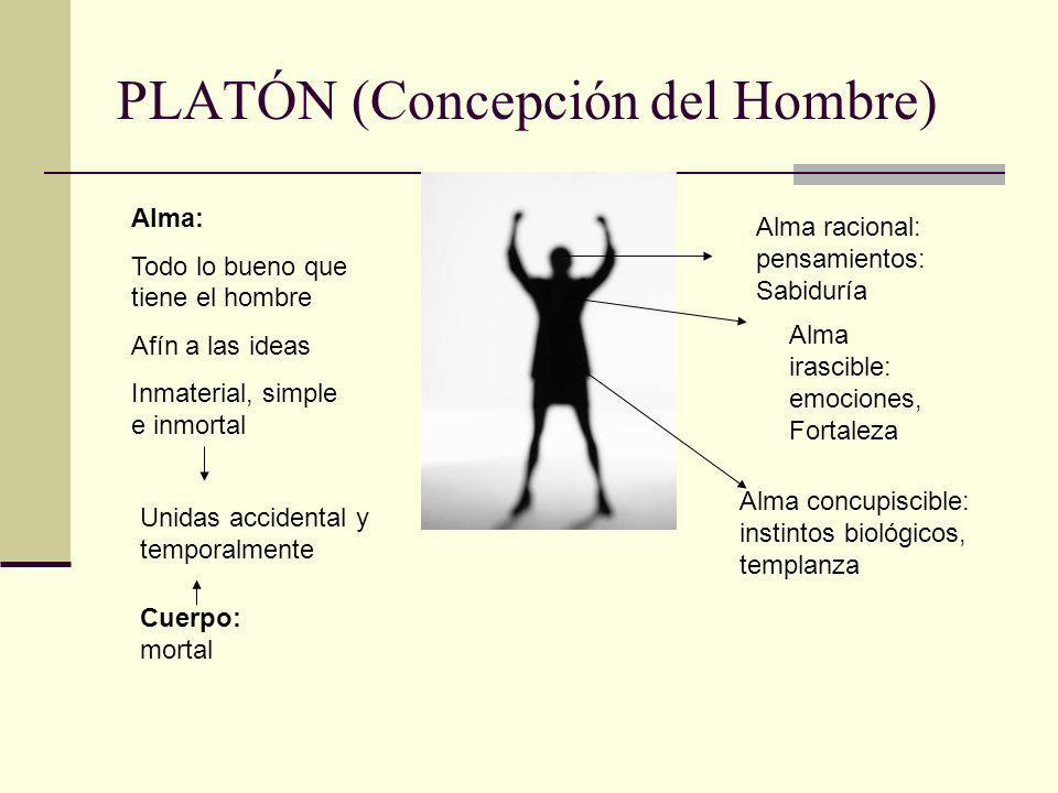 PLATÓN (Concepción del Hombre)