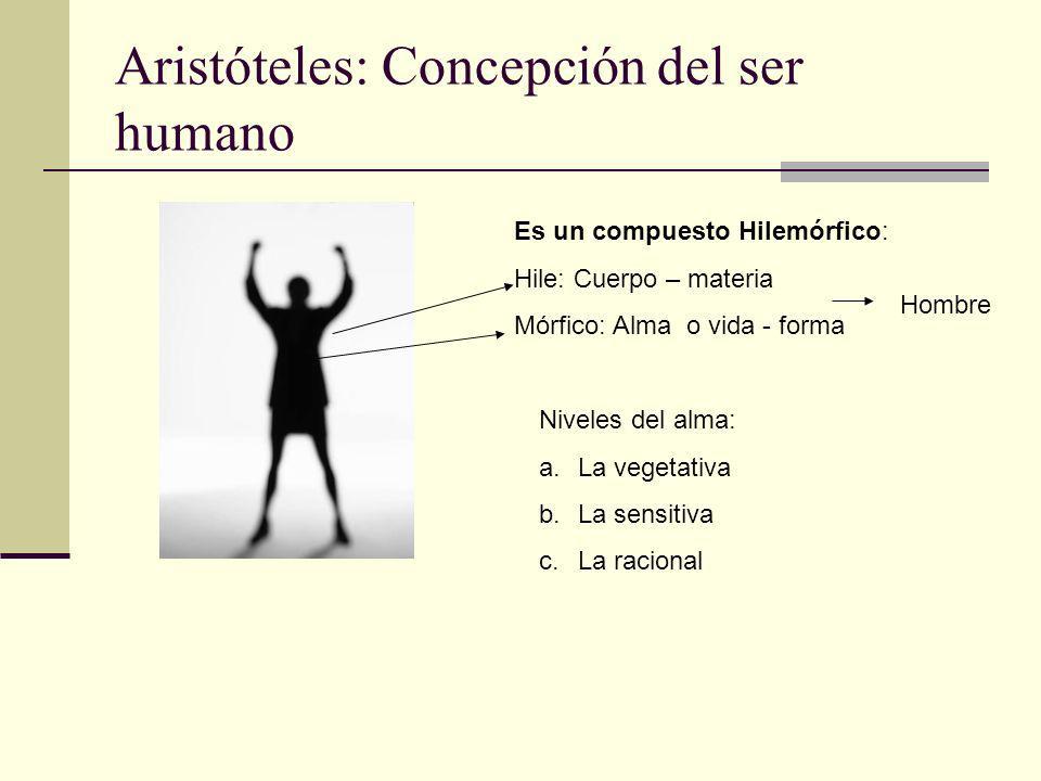 Aristóteles: Concepción del ser humano