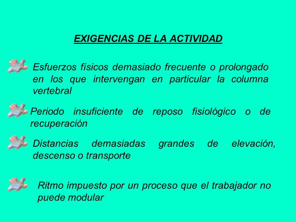 EXIGENCIAS DE LA ACTIVIDAD