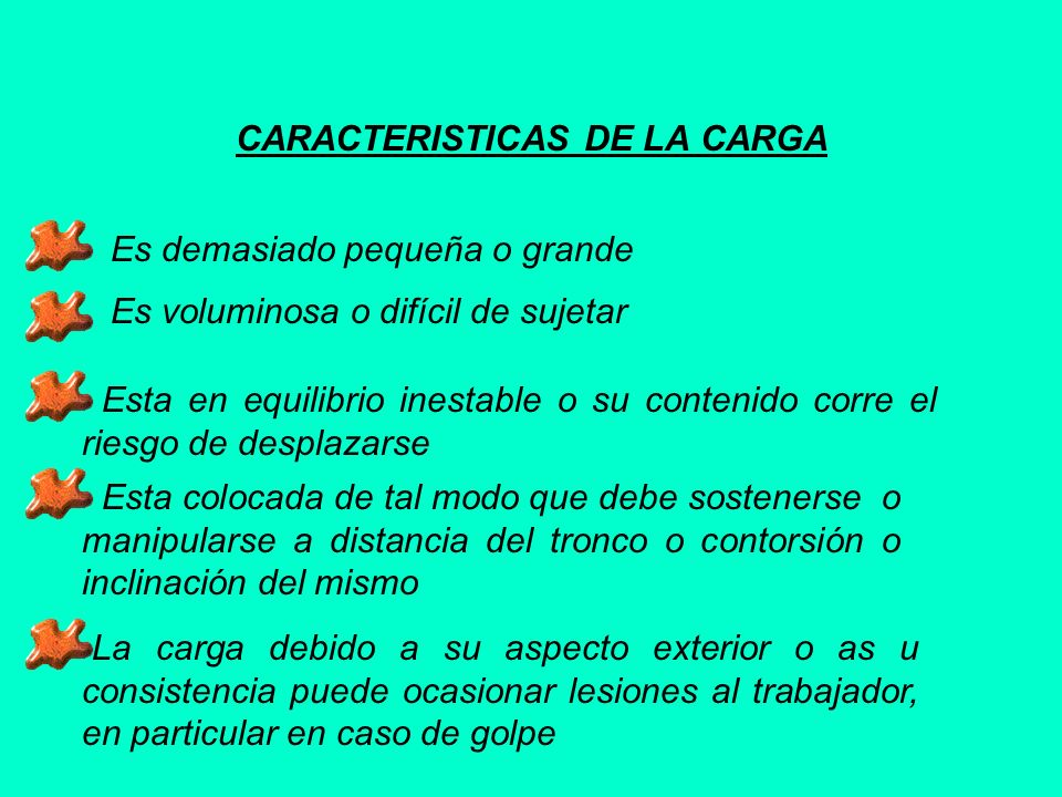 CARACTERISTICAS DE LA CARGA