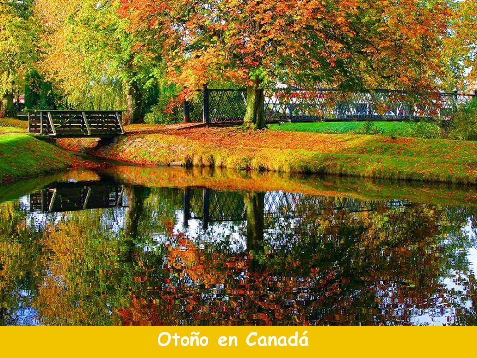 Otoño en Canadá