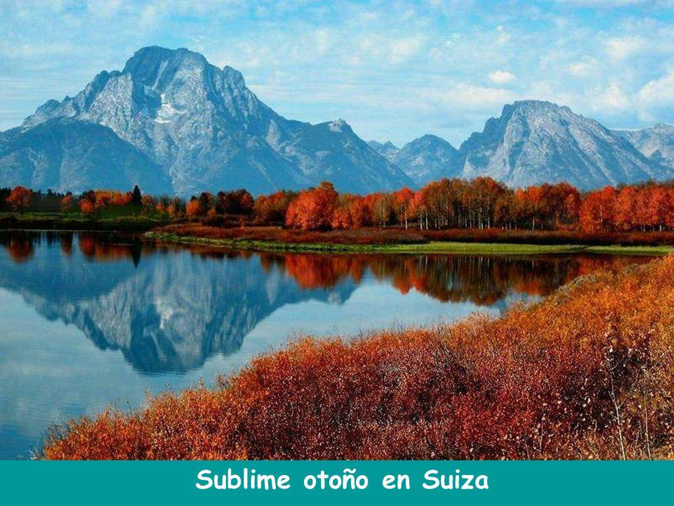 Sublime otoño en Suiza