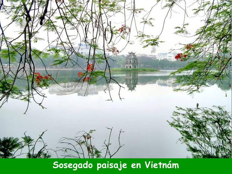 Sosegado paisaje en Vietnám