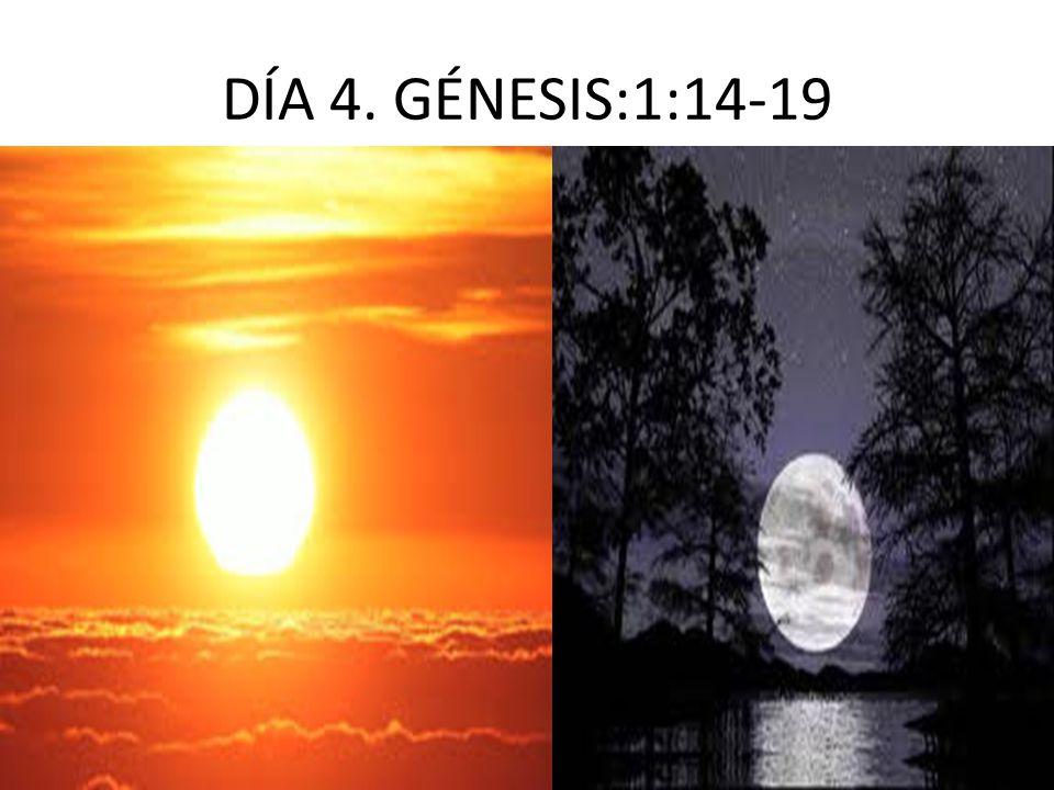 DÍA 4. GÉNESIS:1:14-19