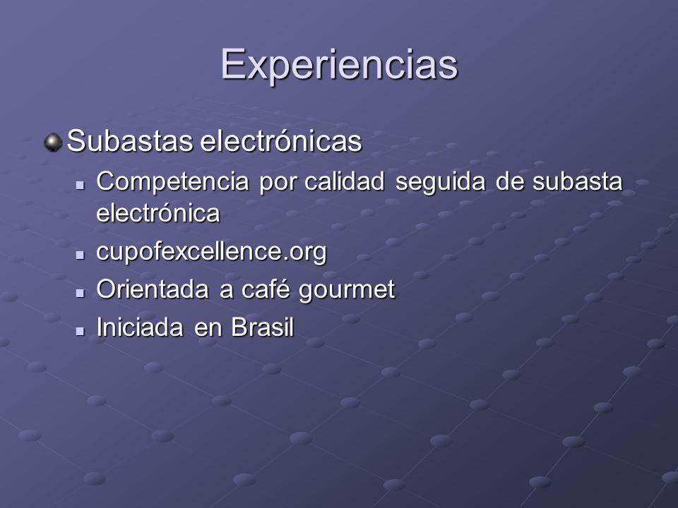 Experiencias Subastas electrónicas