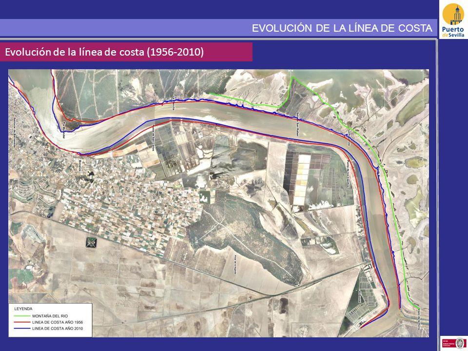 Evolución de la línea de costa (1956-2010)