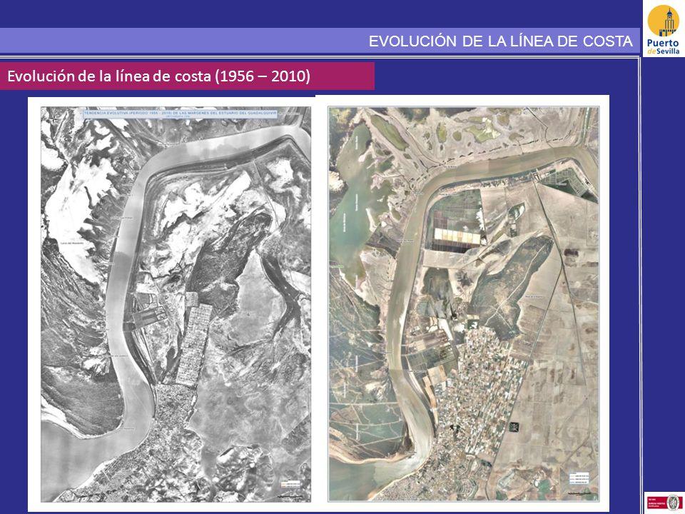 Evolución de la línea de costa (1956 – 2010)