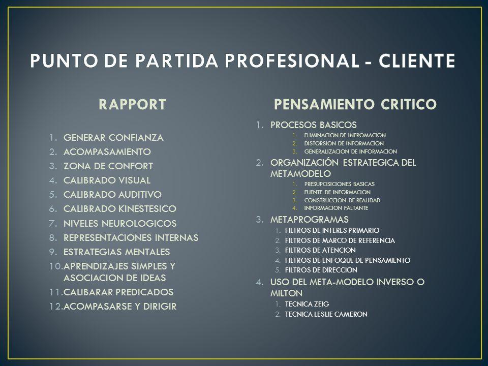 PUNTO DE PARTIDA PROFESIONAL - CLIENTE