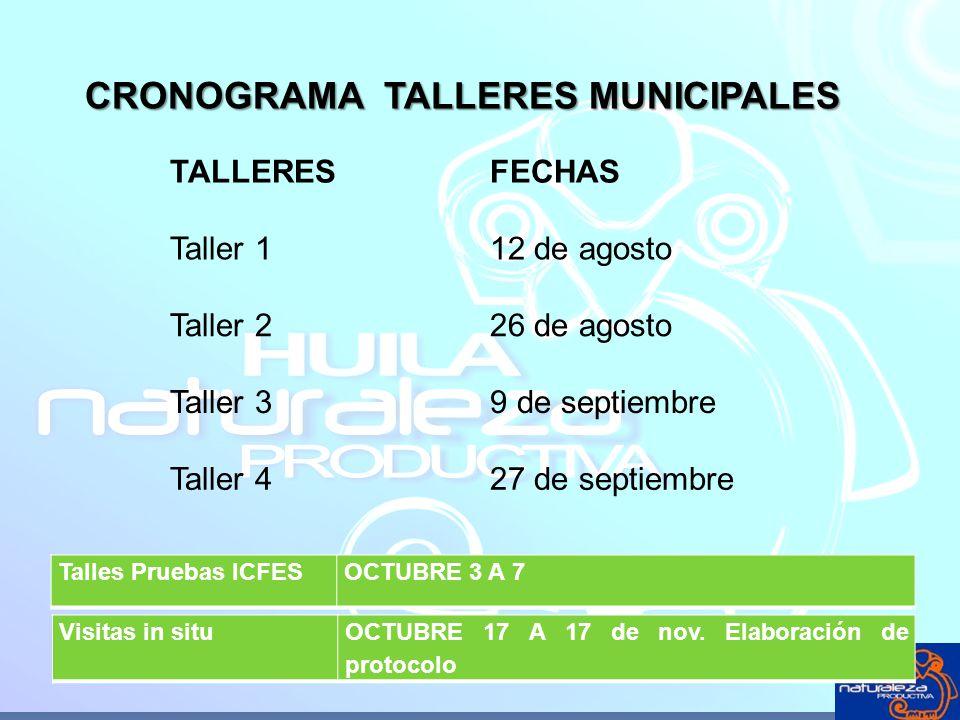 CRONOGRAMA TALLERES MUNICIPALES