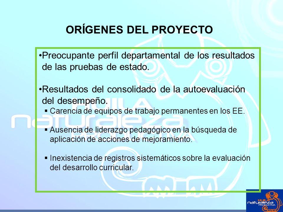 ORÍGENES DEL PROYECTO Preocupante perfil departamental de los resultados de las pruebas de estado.