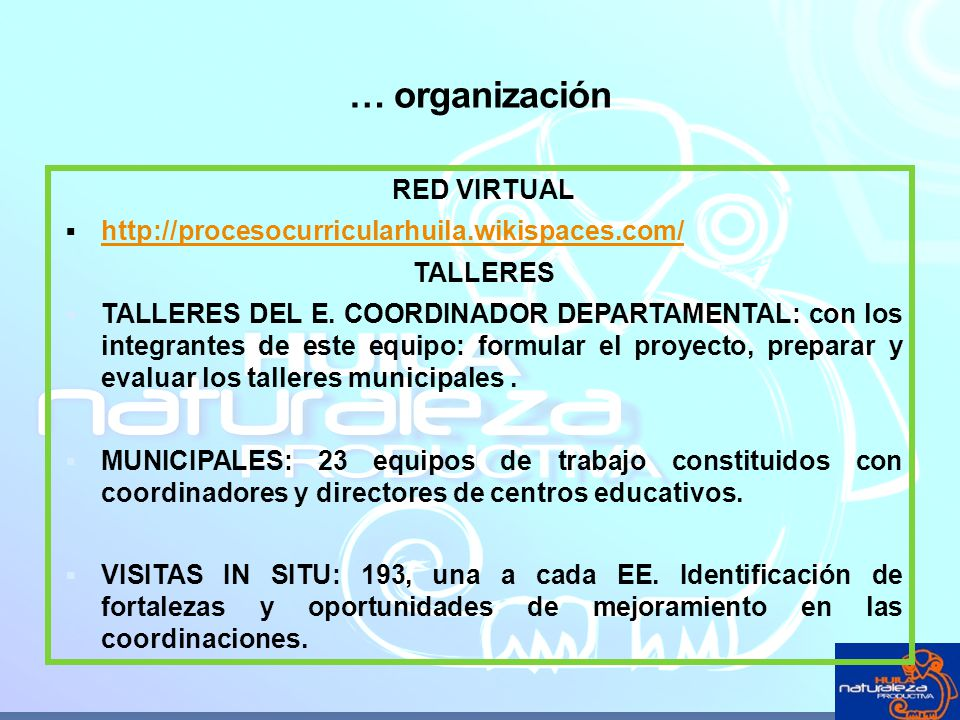 … organización RED VIRTUAL